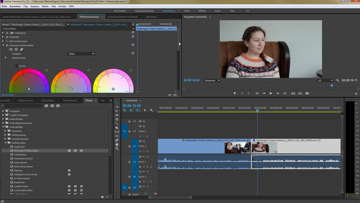 Still medium adobe premiere kapitel 7 farben